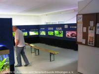 010_Ausstellung-2010