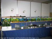 006_Ausstellung-2010