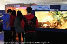Besucher_vor_Boa-_und_Igel-Terrarien