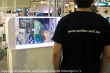 09_Quallen-Welt