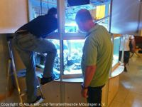 Pflege_Kinderklinik-Aquarium_April2018_04