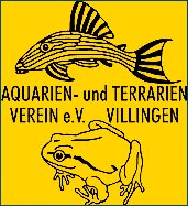 Aquarienverein Villingen