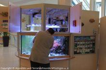 Pflege_Kinderklinik-Aquarium_1